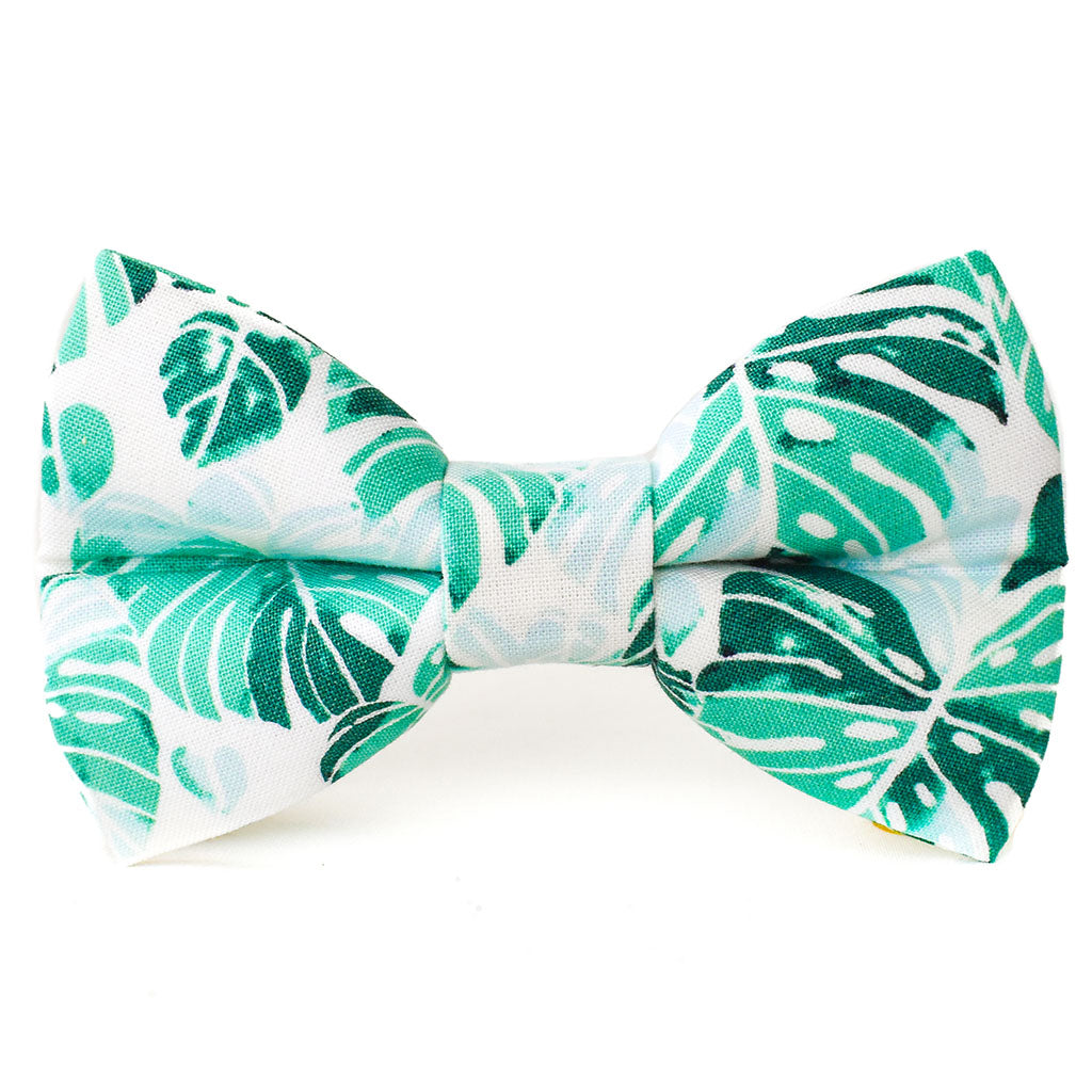 The Cascade Dog Bow Tie