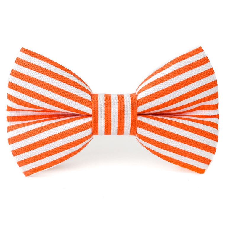 The Gemini Dog Bow Tie