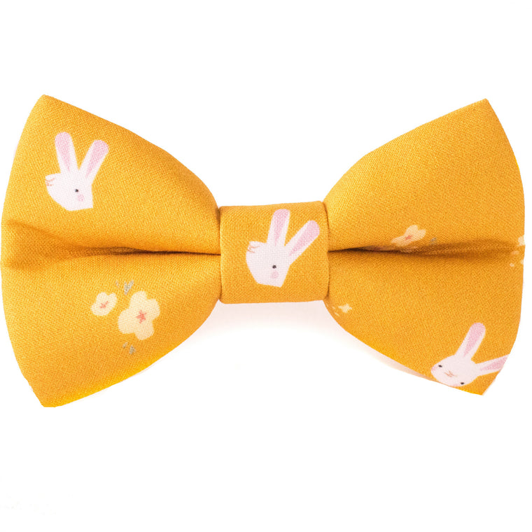 Bunny Blossoms Dog Bow Tie