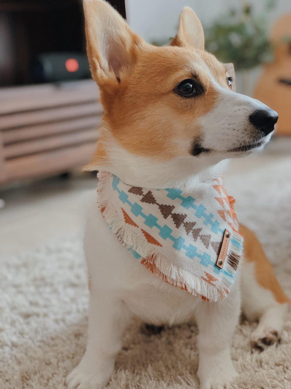 THE AMAZON - Dog Flannel Fray Bandana