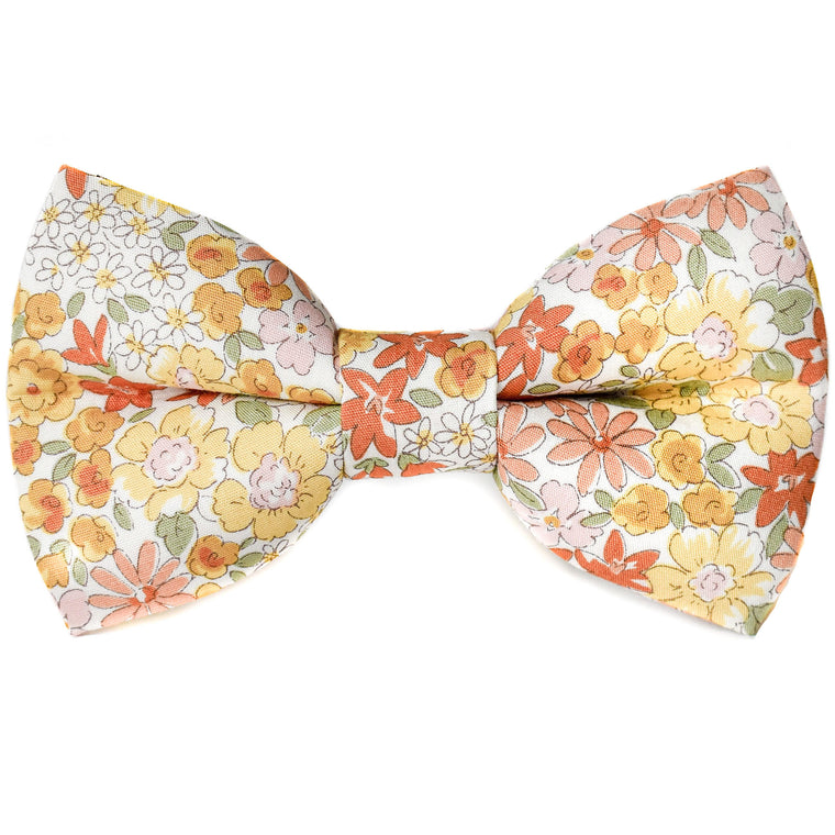 Sunset Meadow Dog Bow Tie