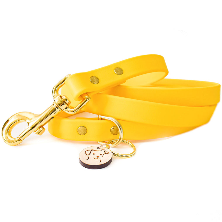 Buttercup Yellow Faux Leather Leash