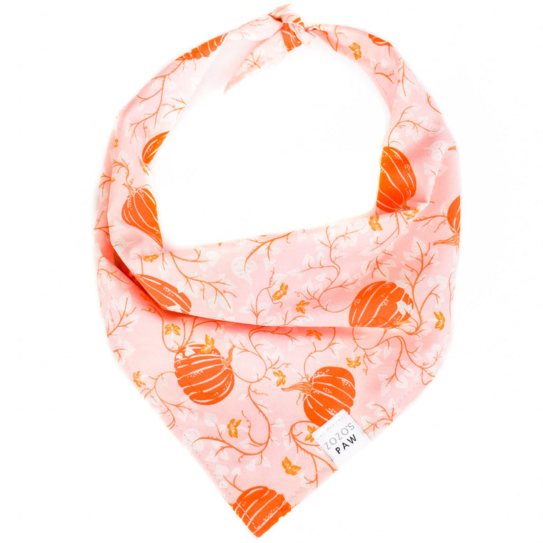 Fairy Tale Pumpkins Dog Bandana