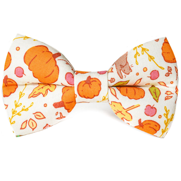 Autumn Adventures Dog Bow Tie