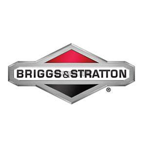 Briggs & Stratton Gun - 319853GS-Engine Parts-SES Direct Ltd