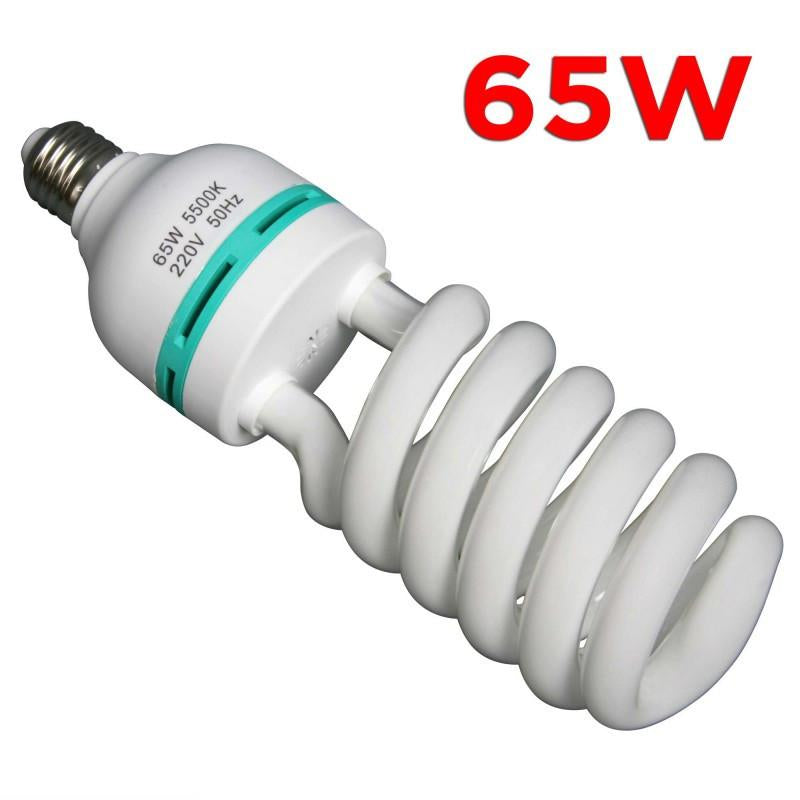 WI: 1 x 65W Energy Saving Bulb