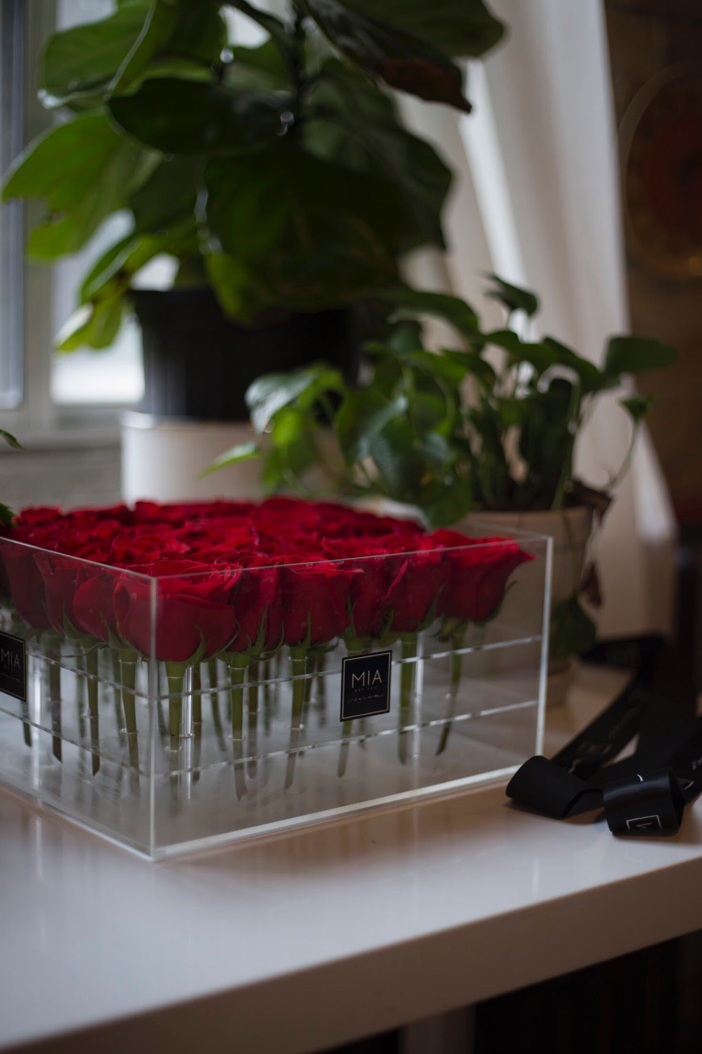 acrylic luxury clear red rose box toronto