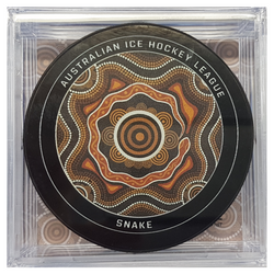 Ice hockey puck with snake design