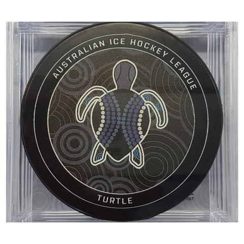 Ice hockey puck with turtle design