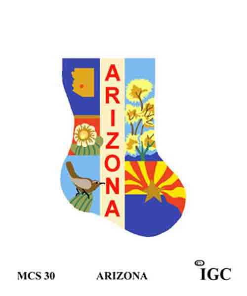 In Good Company Arizona Mini Sock