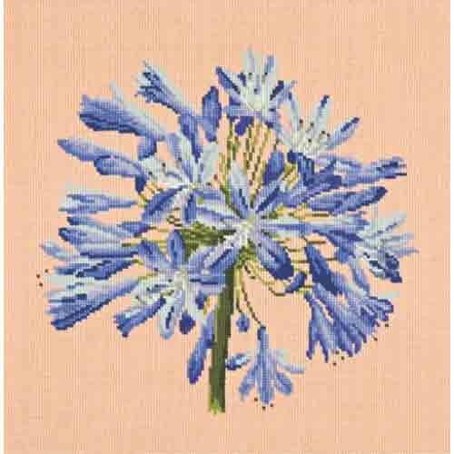 Elizabeth Bradley Blooms Needlepoint Kit