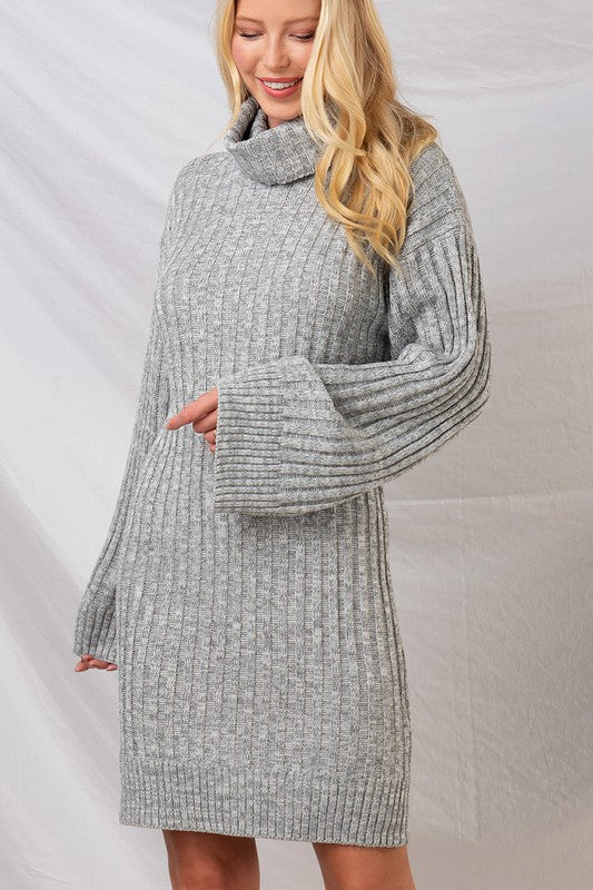Sophie Rib Knit Sweater Dress