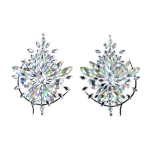 Crystal Flower Burst Pasties