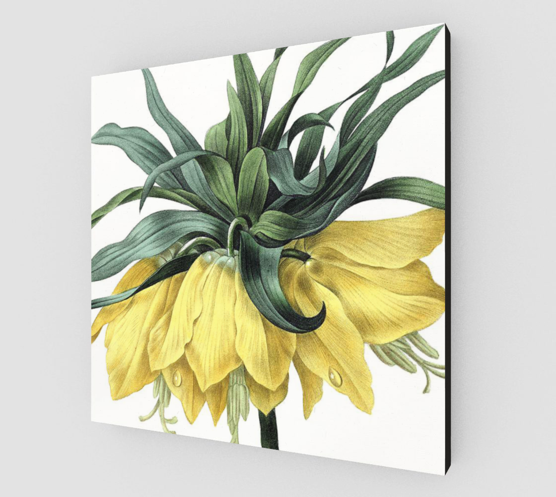 Vintage Botanical Royal Crown Lily Canvas