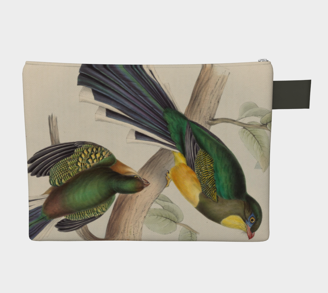 AUSTRALIAN BIRDS CARRY ALL