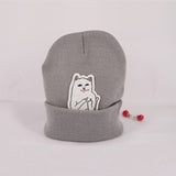 autumn winter spring beanie new style cat wool knit hat women