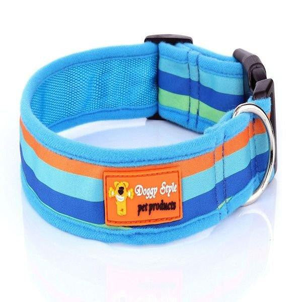 Doggy Style Dog Collars - Rocky Design (matching lead available)