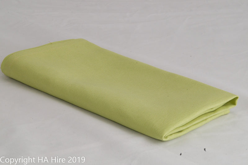 Light Green Napkin