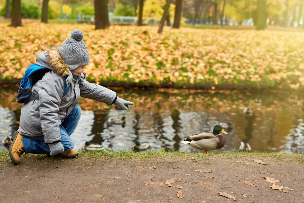 girl pointing at a duck while walking