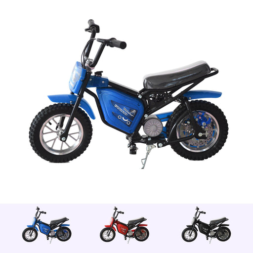 RiiRoo 250W Electric Mini Dirt Bike Blue