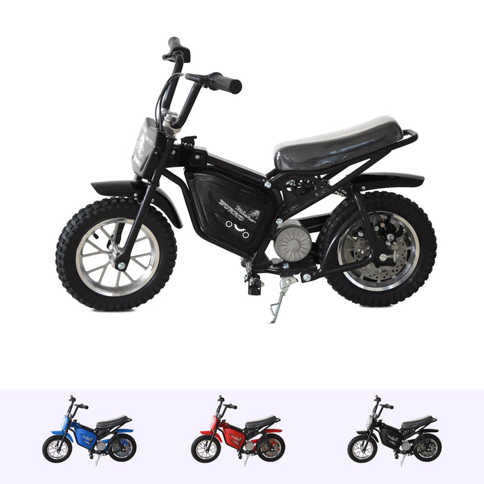 RiiRoo 250W Electric Mini Dirt Bike Black