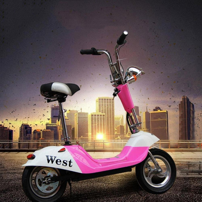 RiiRoo Venice - Limited Edition Old School Electric Scooter 350W