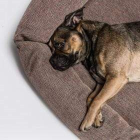 Cloud 7 Sleepy Dog Bed Cover - Herringbone Brown - COVER ONLY
