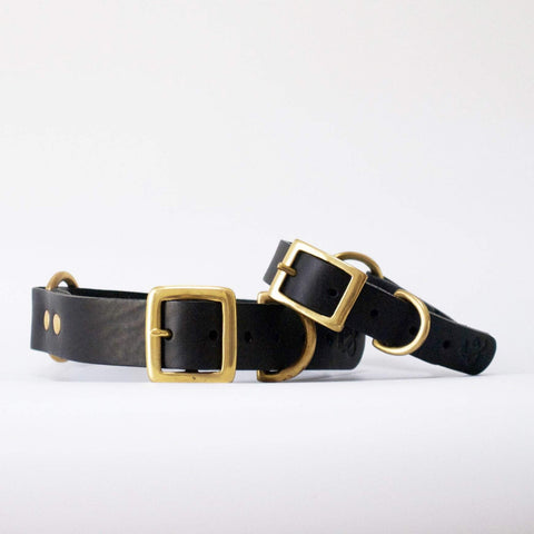 Fetch and Follow Classic Leather Collar - Black