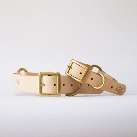Fetch and Follow Classic Leather Collar - Natural