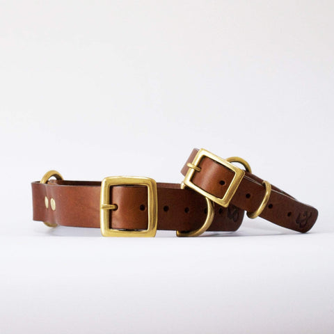 Fetch and Follow Classic Leather Collar - Tan
