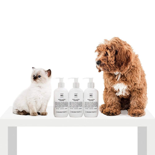 Houndztooth Puppy & Kitten Shampoo