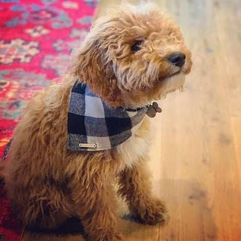 The Foggy Dog Dog Bandana Flannel - Black and White Check