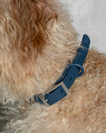 Wild One Collar - Blue