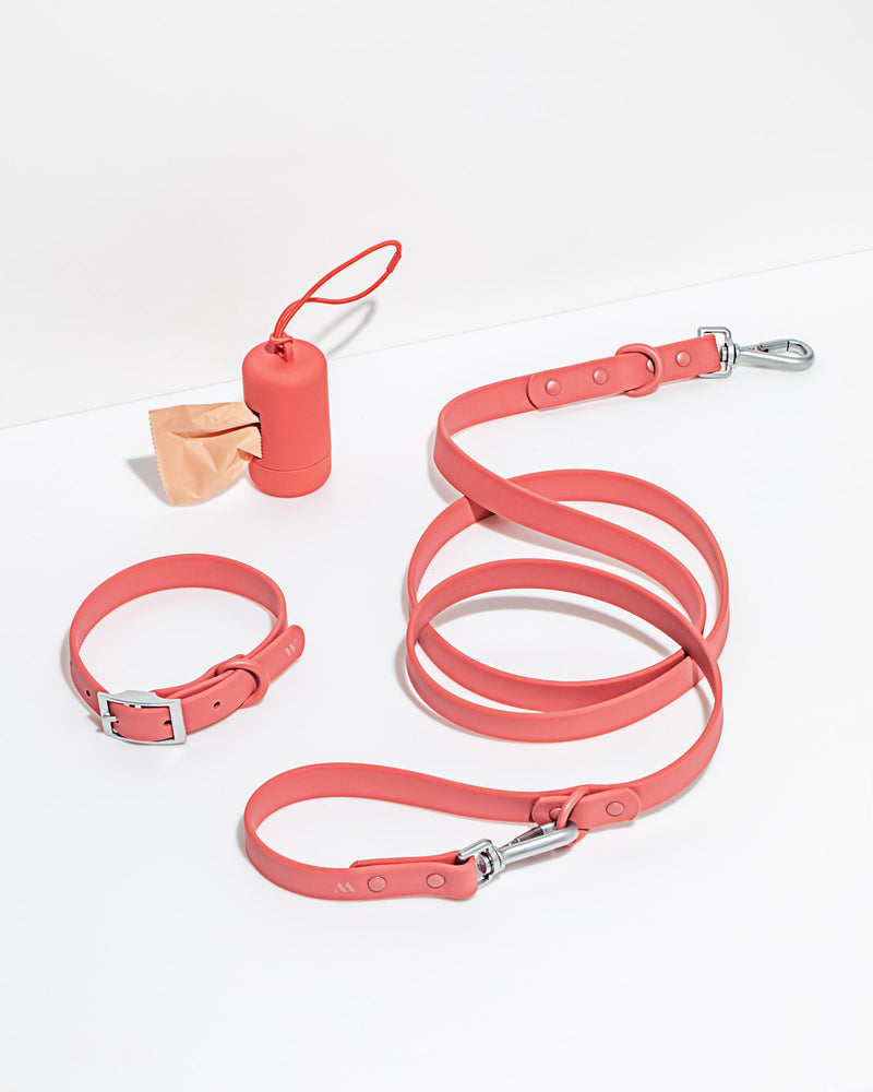 Wild One Wild One Collar - Red