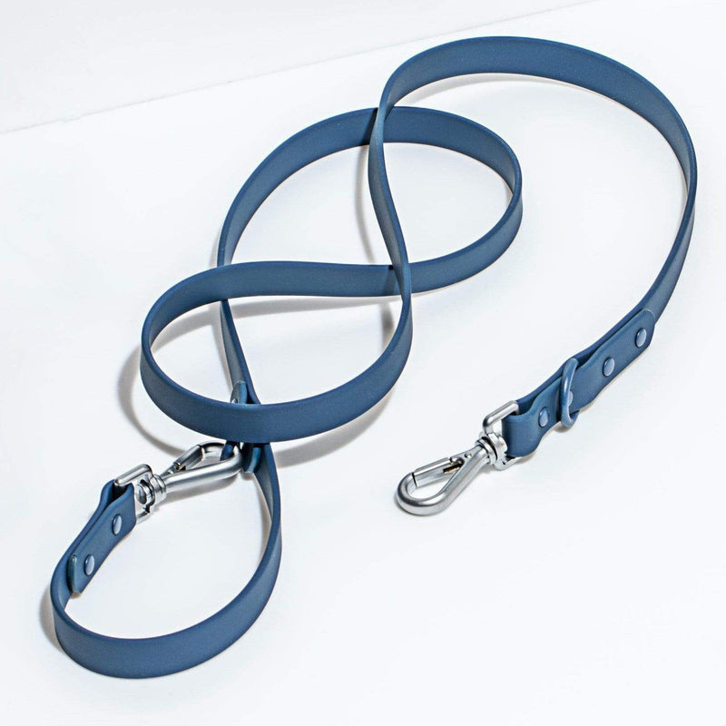Wild One Leash - Blue