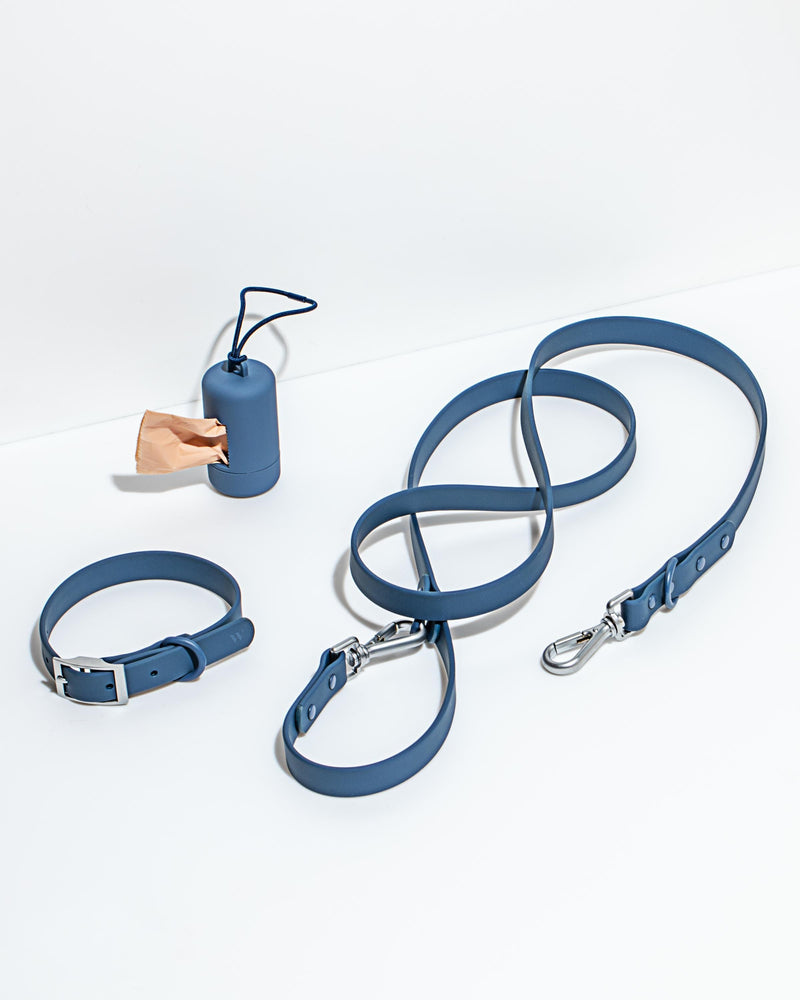 Wild One Wild One Leash - Blue