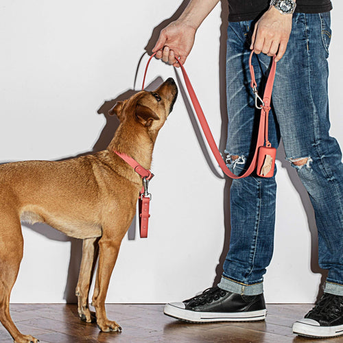 Wild One Wild One Leash - Red