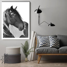 Horse Portrait Face Black&White Stretched Canvas Print Framed Wall Art Home