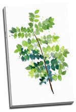 Tree leafs Watercolour Framed Canvas Prints Modern Wall Art Home Ginkgo Tree