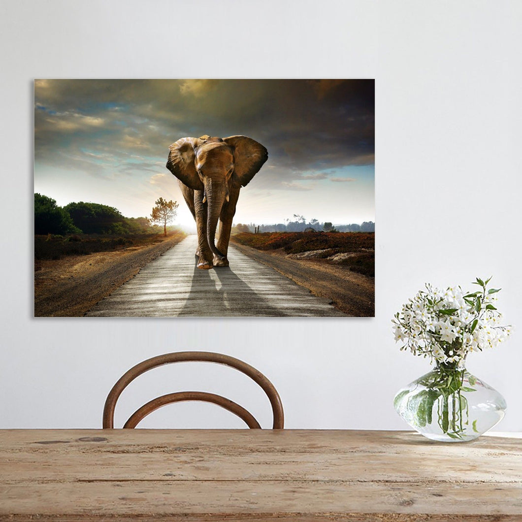 Elephant Shadow Stretched Canvas Prints Wall Art Decor Framed Wildlife Photo