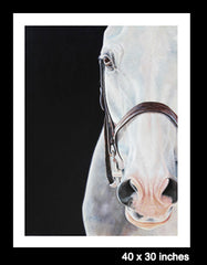 Bridle - LIMITED EDITION PRINT