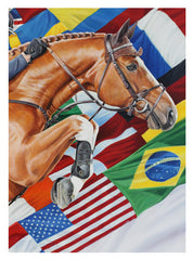 Flags - LIMITED EDITION PRINT