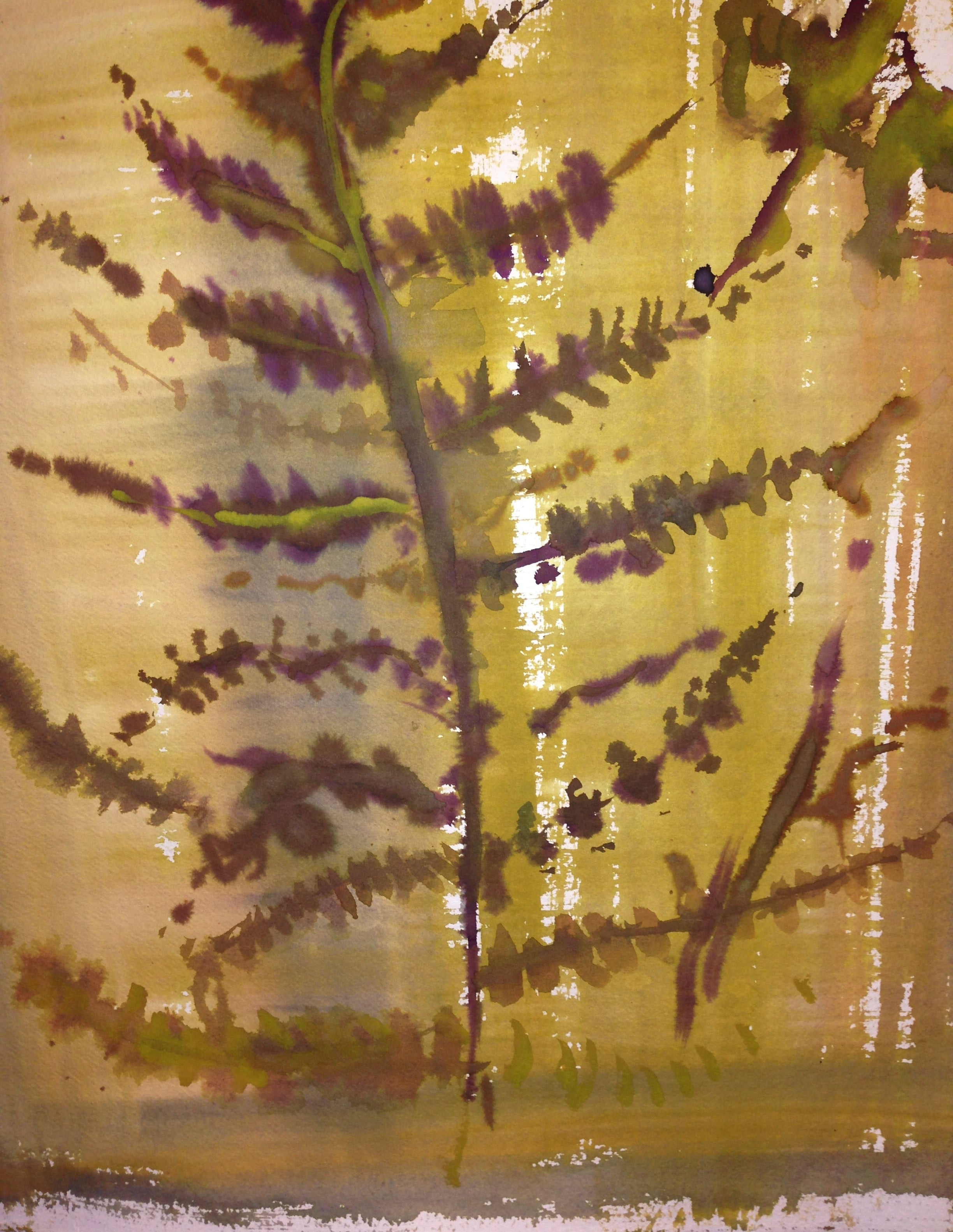 Pressed Fern Watercolour