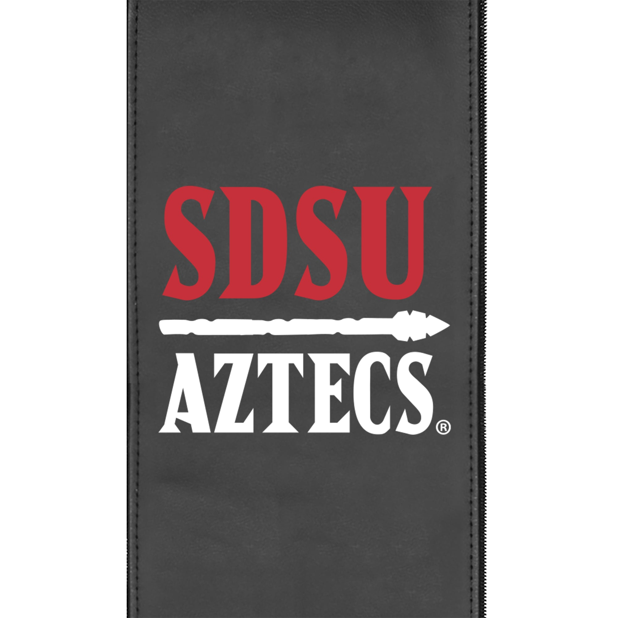 Logo Panel with San Diego State Secondary