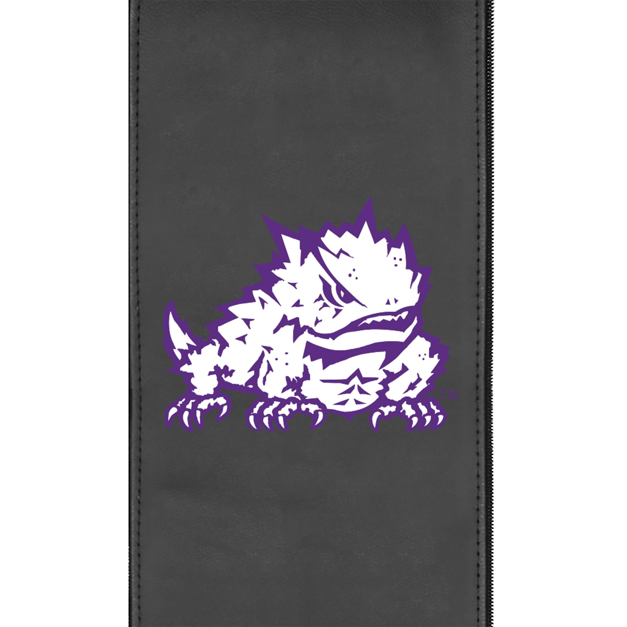 Logo Panel with TCU Horned Frogs Secondary