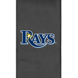 Tampa Bay Rays Logo Panel
