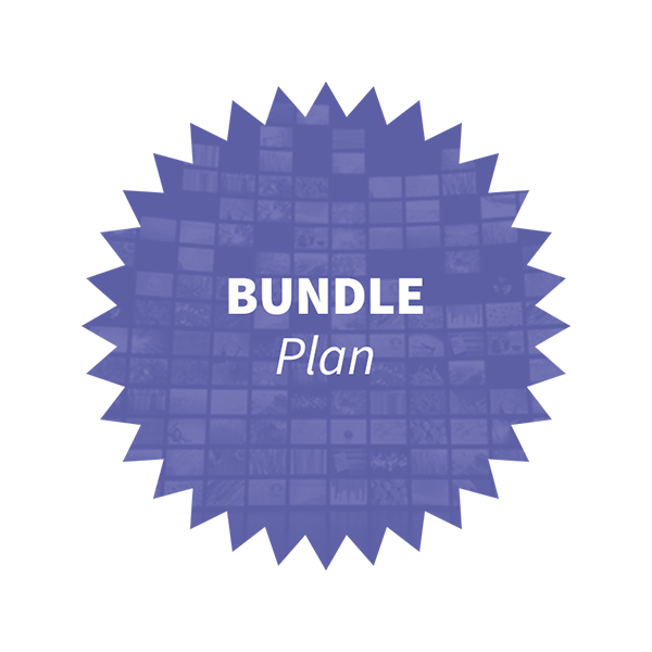 BUNDLE PLAN
