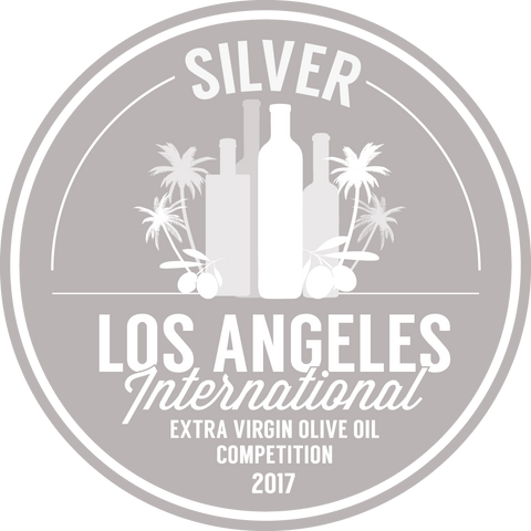Awards judithb 2017 evoomedals silver