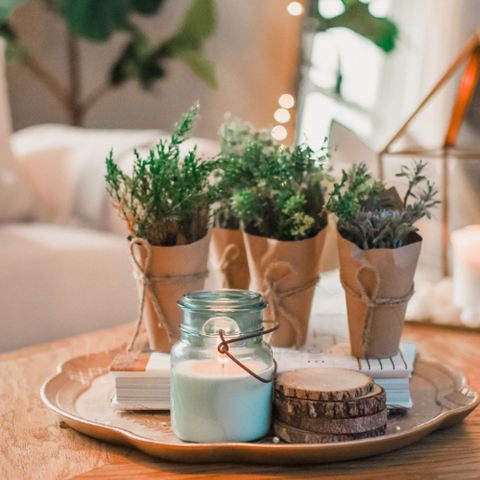 faux-potted-plants-spring-cloth-and-cabin