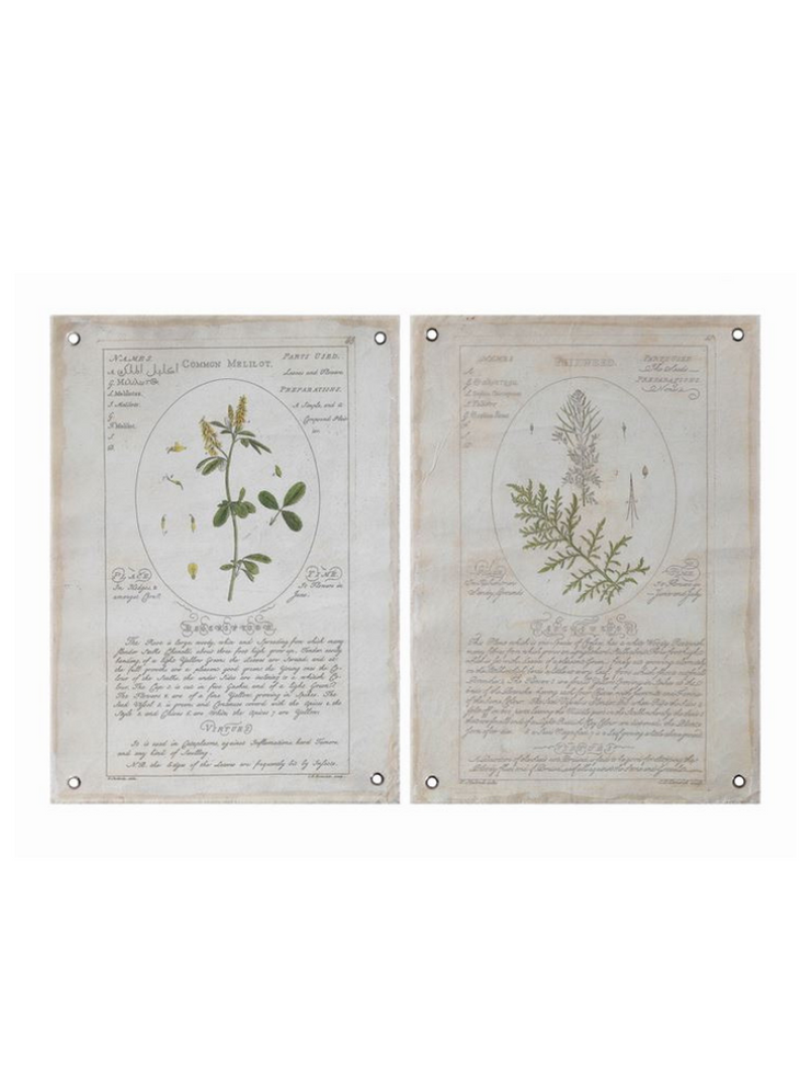 Vintage Botanical Grommet Wall Canvases / Set of 2 – Cloth + Cabin